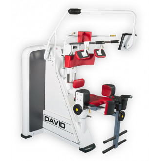 Тренажер механотерапевтический David Back Concept F120 Ротационный комплекс для тренировки торса в Краснодаре